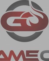 Logo der GameOn Media GmbH & Co. KG