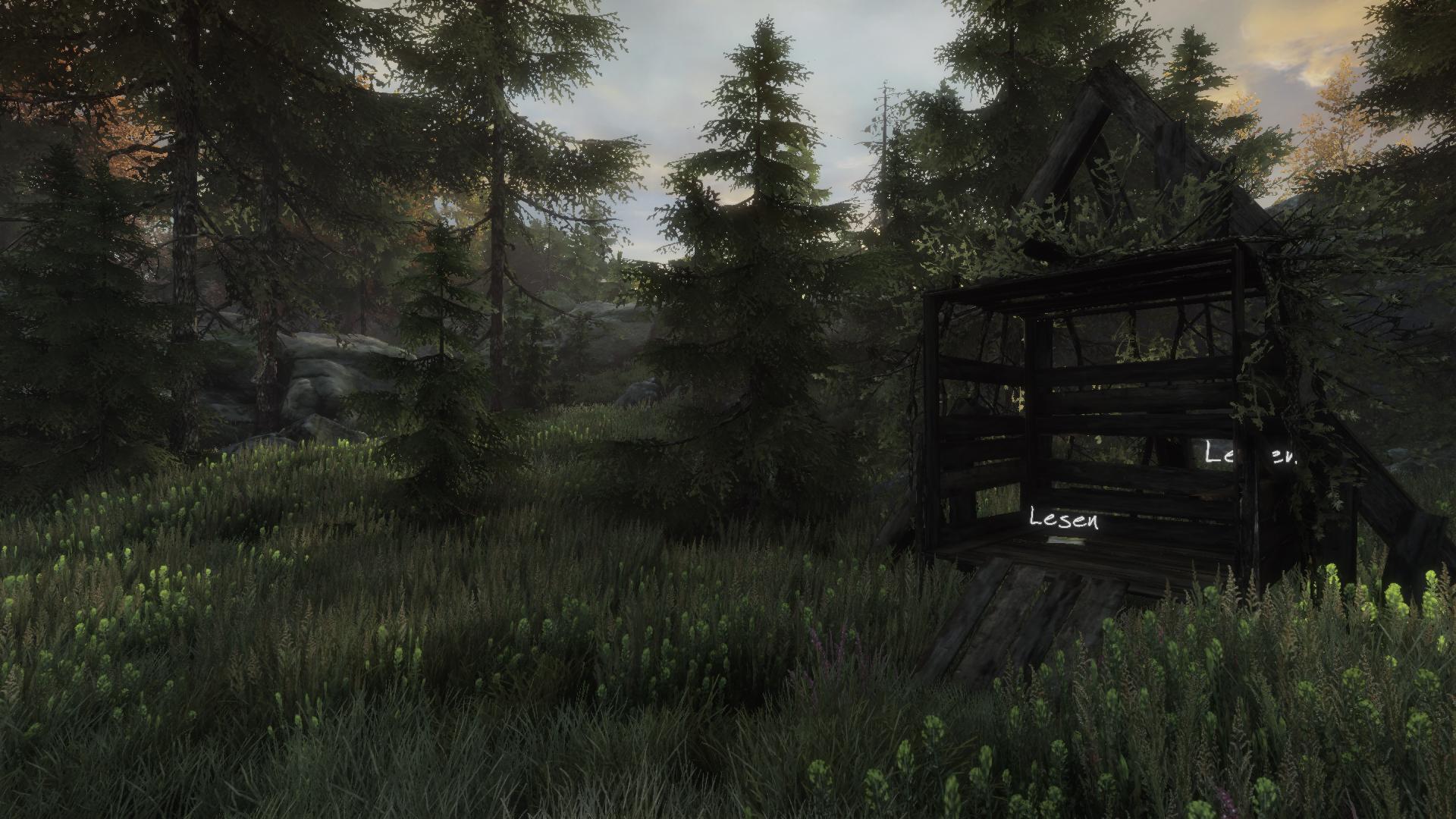 Eine grob zusammengezimmerte Hütte im Wald, darin ein Zettel mit kindlicher Schrift und das zerissene Cover einer Weltraumgeschichte - die Gedanken spinnen langsam ein Netz