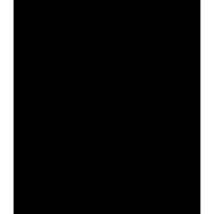 FakeDice_300x300pixel_Black