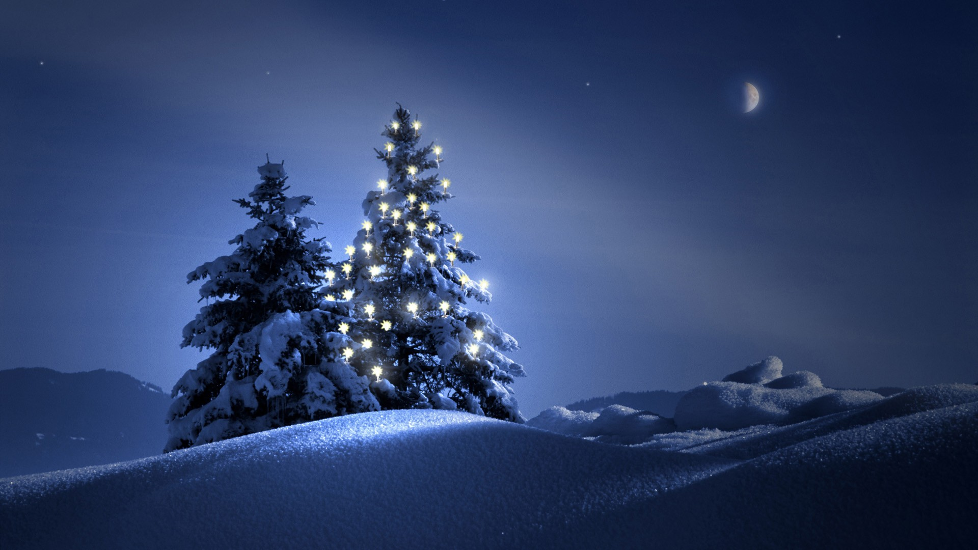 Christmas-Trees-Wallpaper-Backgrounds-1