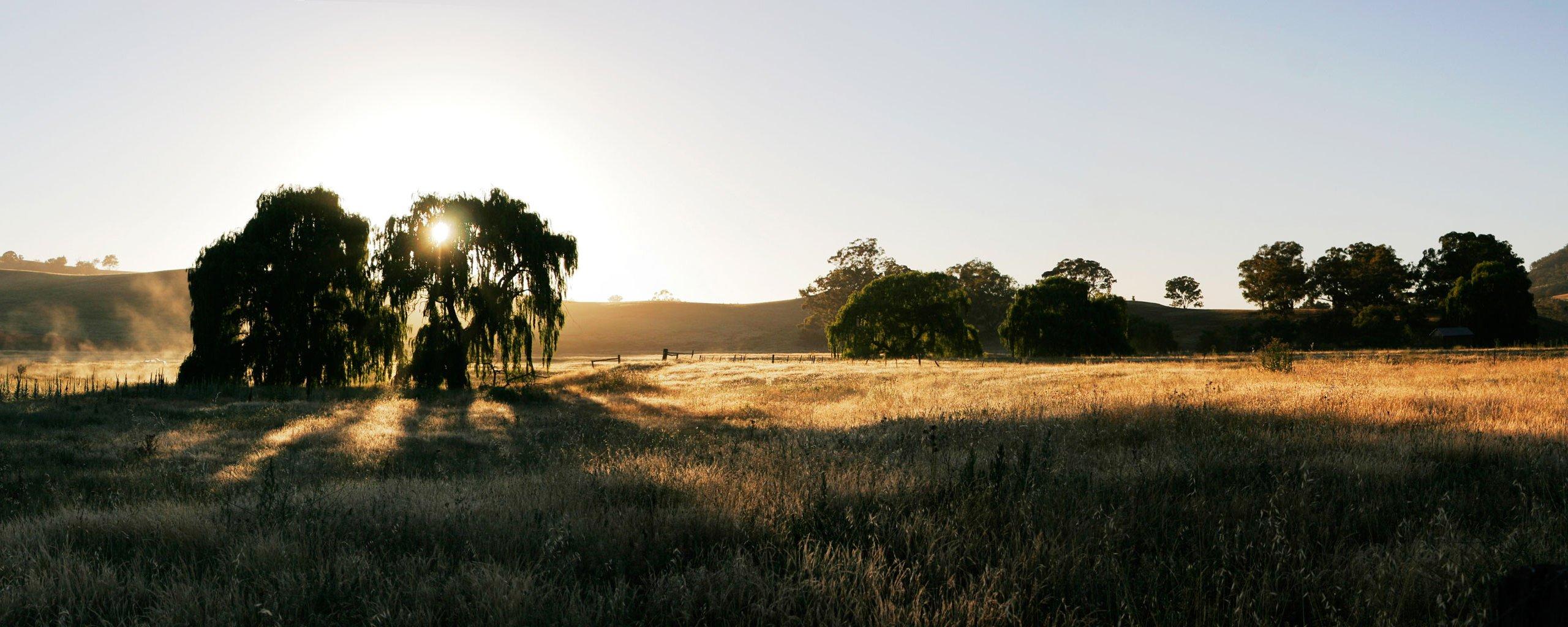 Dawn_at_swifts_creek_panorama